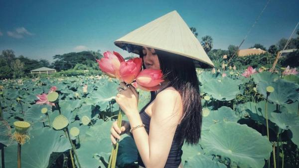 Phát hiện đồng sen đẹp đến ngất ngây ở An Giang