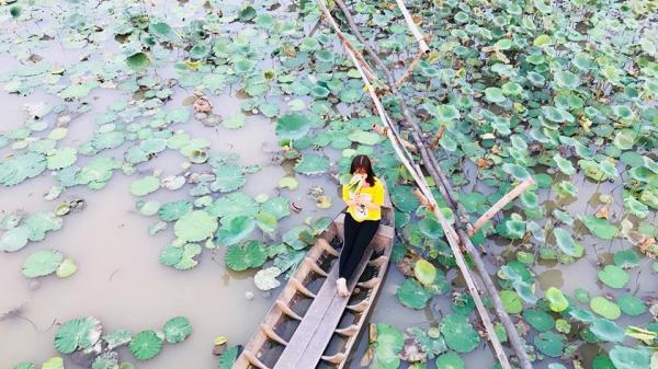 Độc lạ lại còn đẹp ngất ngây quán cà phê ao sen ở An Giang cho hội bạn hẹn hò chụp ảnh dịp giáp Tết