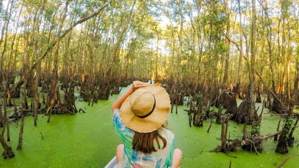 Về An Giang chèo thuyền khám phá rừng tràm hot nhất miền Tây