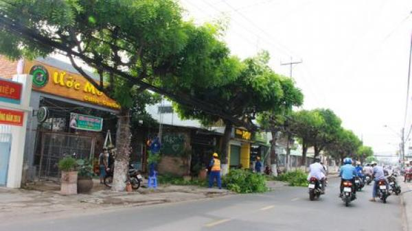 Vĩnh Long: Mở rộng đường Trưng Nữ Vương - xây dựng TP Vĩnh Long trở thành đô thị loại II vào năm 2020