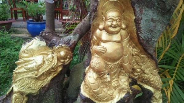 """Nghệ nhân Cần Thơ """"chơi ngông"""", dát vàng lá lên thân cây gây kinh ngạc"""