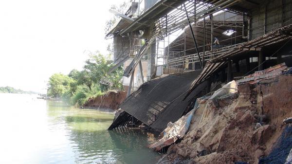 Tân Châu (An Giang): Sạt lở nghiêm trọng đất bờ kênh xáng, gây thiệt hại nặng