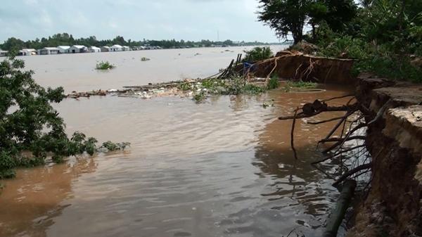 Sạt lở nghiêm trọng bờ sông Hậu ở Tân Châu đoạn dài 40m, 9 hộ dân phải di dời
