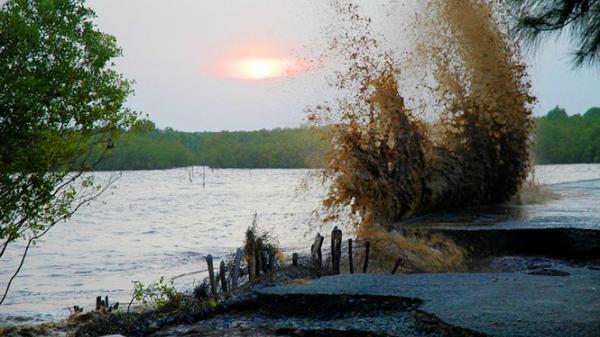 Báo động: ĐBSCL đang sụt lún nghiêm trọng và nước biển dâng cao, nguy cơ chìm trong biển nước?