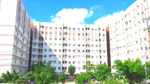 An Giang: Bắt giam người dàn xếp rồi tung clip sex của Giám đốc Trung tâm Chăm sóc sức khỏe sinh sản
