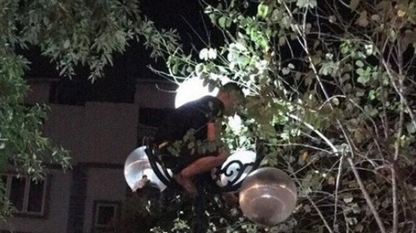 """Hàng chục cảnh sát giải cứu nam thanh niên """"ngáo đá"""" leo cột đèn"""