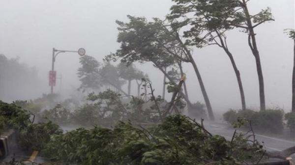 CẢNH BÁO: Áp thấp nhiệt đới gây lốc xoáy, vòi rồng ở Nam Bộ
