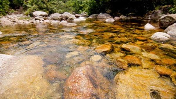 Đến Bắc Giang ngắm suối nước vàng óng như mật ong
