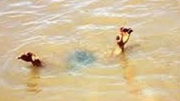 Bắc Giang: 2 em nhỏ 12 tuổi tử v.ong vì đ.uối nước