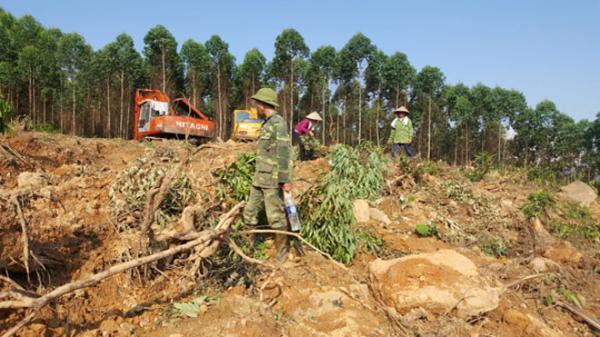 Bắc Giang: Điều tra vụ 2 gia đình hỗ.n chiến vì tranh chấp đất rừng