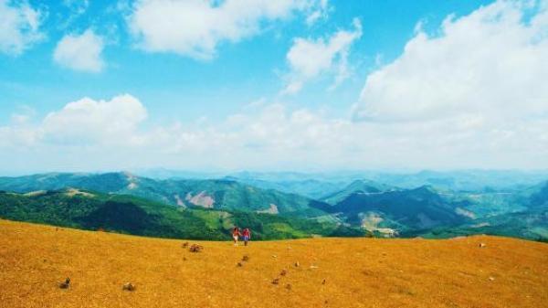 Thảo nguyên xanh bất tận nơi Đồng Cao: Cảnh đẹp mướt, bao la như ở trời Tây, check in thì tuyệt đỉnh