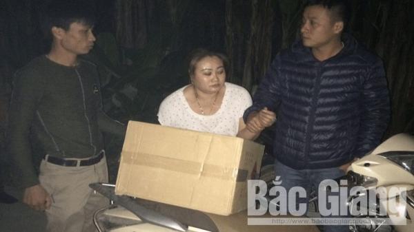 Yên Thế (Bắc Giang): Bắt giữ nữ đối tượng buôn bán, vận chuyển hơn 300 kg pháo nổ