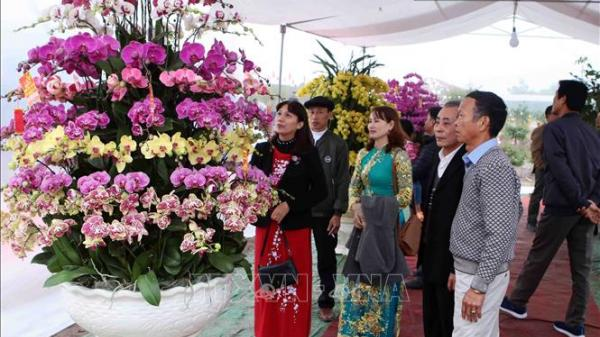 Khai mạc Lễ hội hoa rực rỡ ở Văn Giang (Hưng Yên)