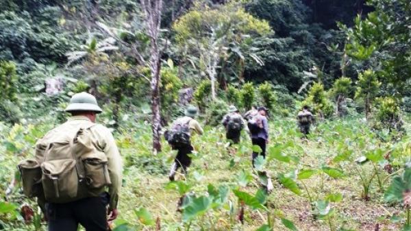Bắc Kạn: Quyết liệt thực hiện các biện pháp bảo vệ rừng Quốc gia Ba Bể