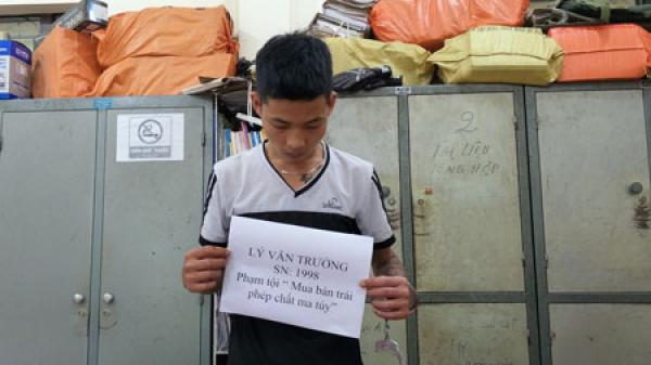 Công an huyện Ngân Sơn: Bắt đối tượng mua bán trái phép chất ma túy