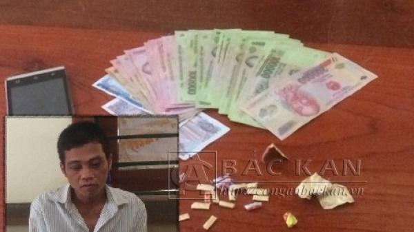 Công an huyện Ba Bể: Bắt đối tượng tàng trữ trái phép chất ma túy