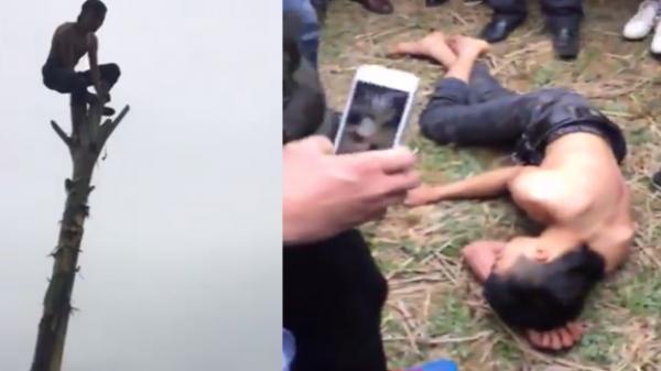 Bắc Kạn: Trèo cây chuối trong lễ hội đầu xuân, nam thanh niên té ngã đau đớn