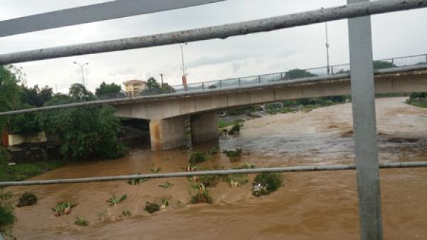 Lũ trên sông Cầu gây thiệt hại hoa màu
