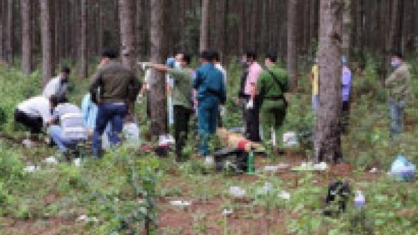 Người đàn ông tử vong khi vào rừng lấy chuối