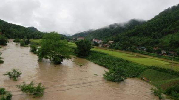 Na Rì: Thiệt hại nghiêm trọng do mưa lũ