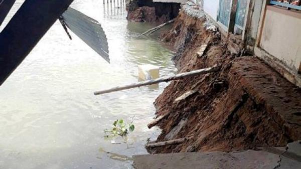 TX Bình Minh: Sạt lở nghiêm trọng tới chân rào, 7 hộ phải khẩn cấp di dời