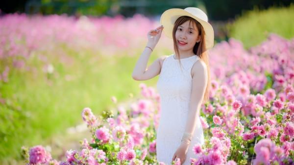 Ngay gần Vĩnh Long có một vườn hoa đủ màu sắc làm say lòng du khách