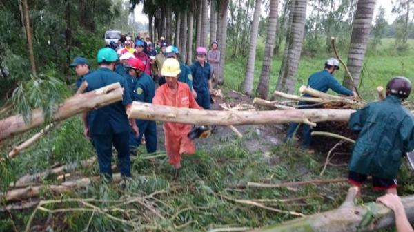 Đồng Tháp: Mưa lớn làm cây đổ ngã chắn ngang lộ nông thôn