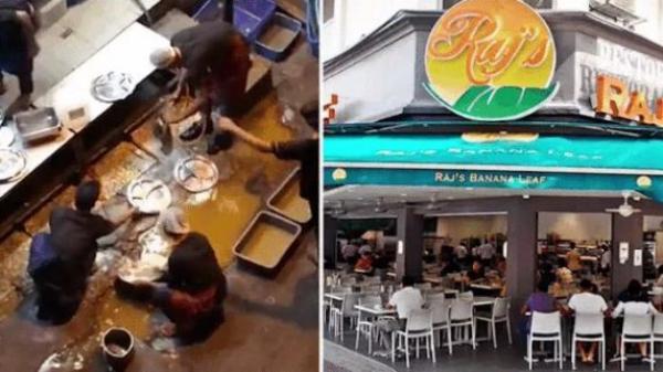 Bị quay clip nhân viên đang rửa bát trong vũng nước đục, nhà hàng nổi tiếng phải đóng cửa ngay lập tức