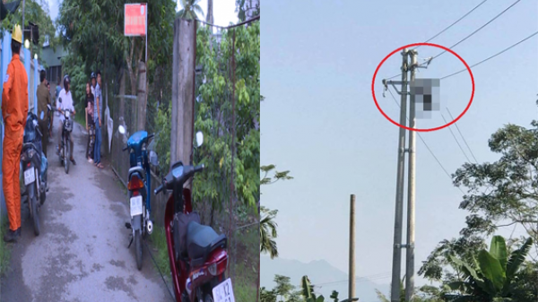 Kinh hoàng: Nam công nhân bị điện giật t.ử vo.ng, thi thể treo lơ lửng trên cây