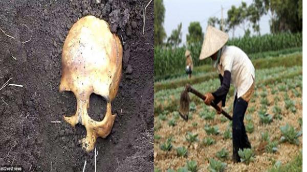 """Đào được hộp sọ khi đang chăm chỉ làm vườn, anh nông dân sợ mất mật khi vợ bảo """"Chồng cũ em đấy, chôn lại đi anh"""""""