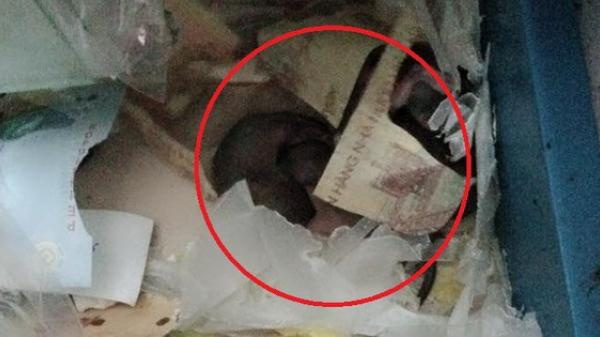 Cả cửa hàng lục đục vì liên tục mất tiền, cuối cùng phát hiện ra kẻ trộm ai cũng tá hỏa