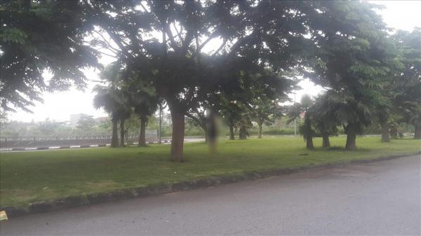 Hoảng hồn phát hiện xác nam thanh niên treo cổ trên cây lúc rạng sáng