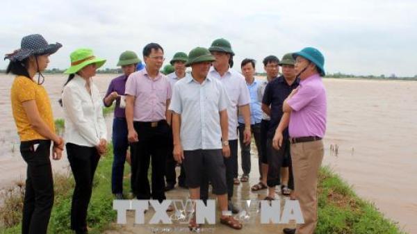 Ứng phó với bão số 3: Nam Định cấm biển, kêu gọi tàu thuyền vào bờ