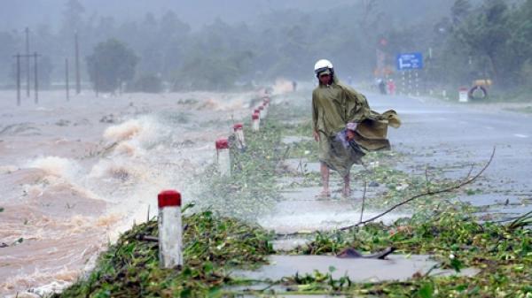 Bão số 3 suy yếu, Nam Định và các tỉnh gió mạnh dần lên cấp 6, sau tăng lên cấp 7, giật cấp 9