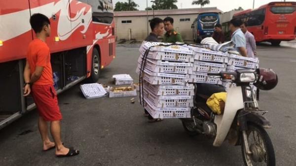 """Nóng: Bắt giữ xe khách biển số Thái Nguyên vận chuyển số lượng KHỦNG gia cầm """"lậu"""" đi tiêu thụ"""