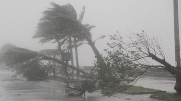 Dự báo thời tiết 5 ngày tới: Ngập lụt chưa dứt, áp thấp lại đe dọa Nam Định và một số tỉnh