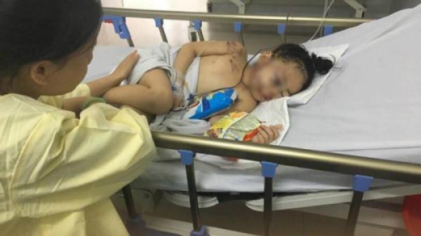 Vừa tỉnh dậy, nạn nhân 6 tuổi của vụ xe rước dâu gặp nạn 13 người chết sợ hãi tìm bố khiến người xem nhói lòng