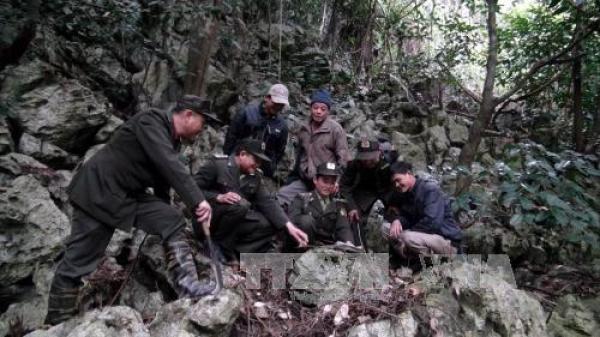 Bắc Kạn: Kiên quyết xử lý các sai phạm liên quan vụ phá rừng ở Vường Quốc gia Ba Bể