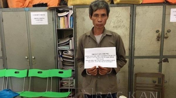 Ngân Sơn: Bắt khẩn cấp đối tượng tàng trữ trái phép chất ma túy