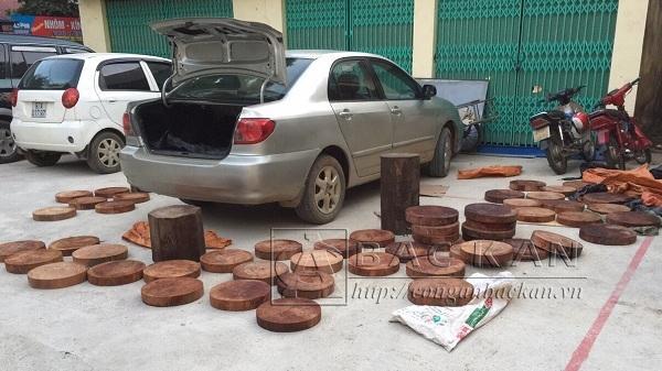 Bắc Kạn: Bắt quả tang ô tô vận chuyển trái phép gỗ nghiến