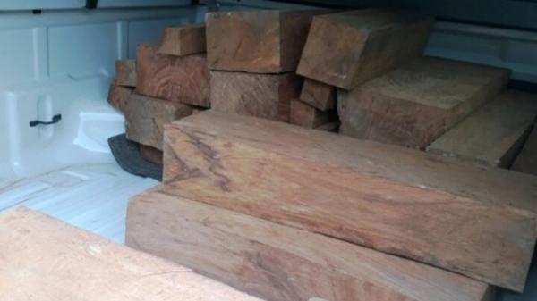 Bắc Kạn: Bắt 02 vụ khai thác, vận chuyển gỗ trái phép