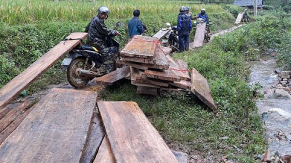 Bắc Kạn: Thu giữ khối lượng lớn gỗ cất giấu trái phép