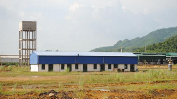Tỉnh nghèo nhưng đất bỏ hoang, nhà máy 'đắp chiếu'