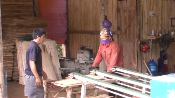 Bắc Kạn: Các cơ sở chế biến gặp khó khăn trong kinh doanh gỗ ván bóc