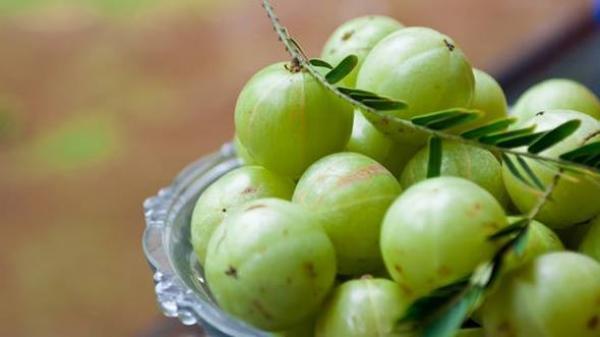 Đặc sản me rừng Bắc Kạn- thứ quà ăn vặt chua chát đầu môi mà ngọt lịm trong lòng