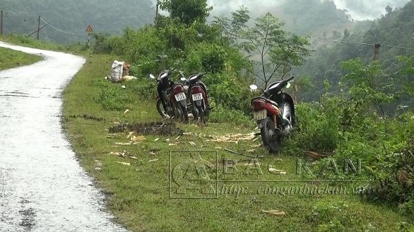 Bắc Kạn: Báo động hiện tượng trộm cắp xe máy trên địa bàn tỉnh