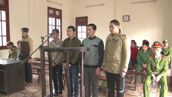 Huyện Bạch Thông xét xử vụ án khai thác gỗ trái phép tại xã Cao Sơn