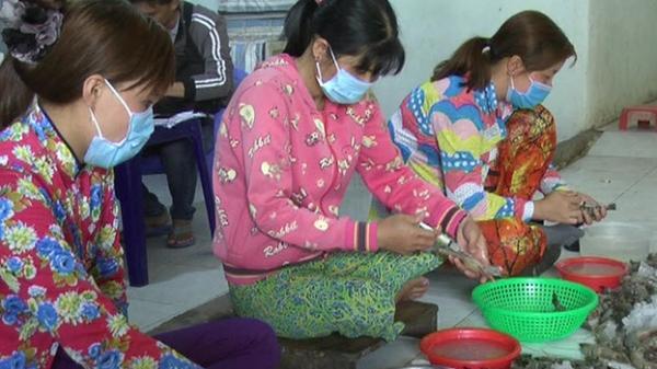 Bạc Liêu: Liên tiếp bắt quả tang các cơ sở thu mua bơm chích tạp chất vào tôm