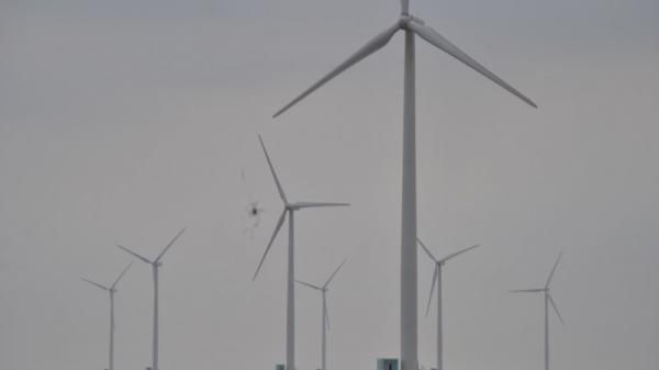 Ông chủ điện gió Bạc Liêu thắng kiện 5 tỷ đồng