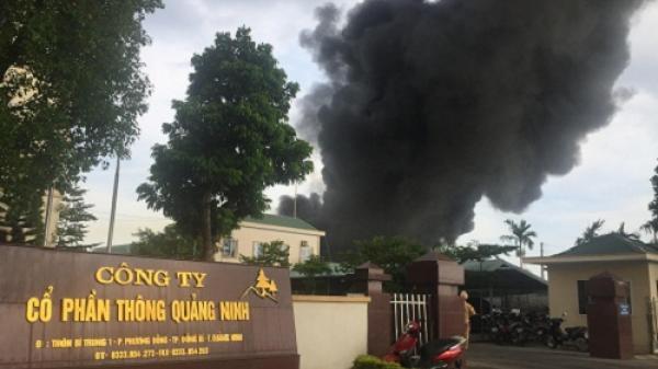 Quảng Ninh: Cháy dữ dội ở công ty CP Thông, ngọn khói bốc cao hàng chục mét